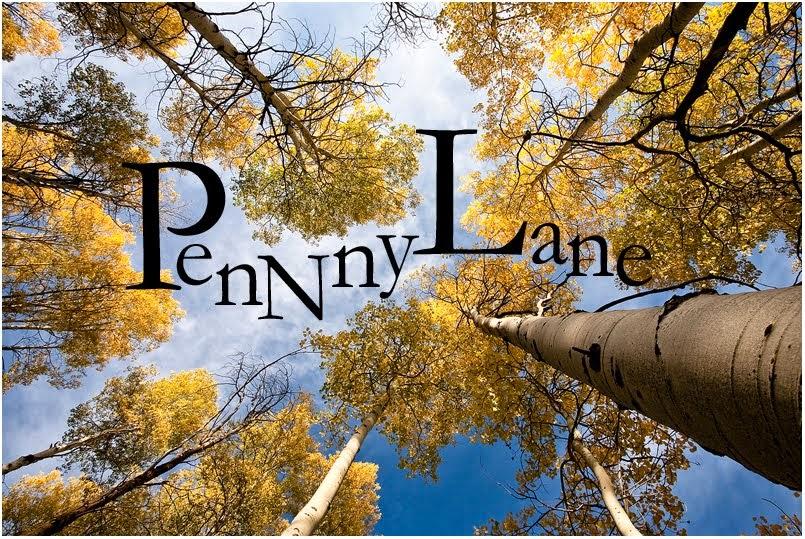 PennnyLane