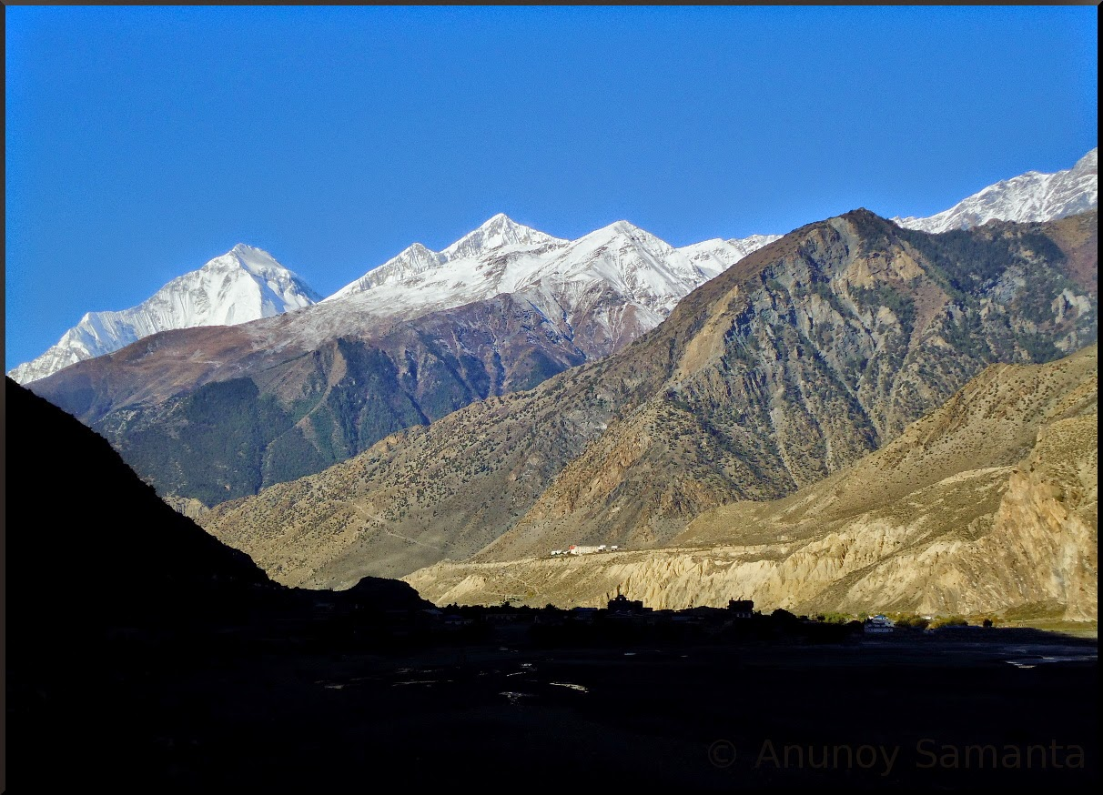 Himalayan Shades in Colour
