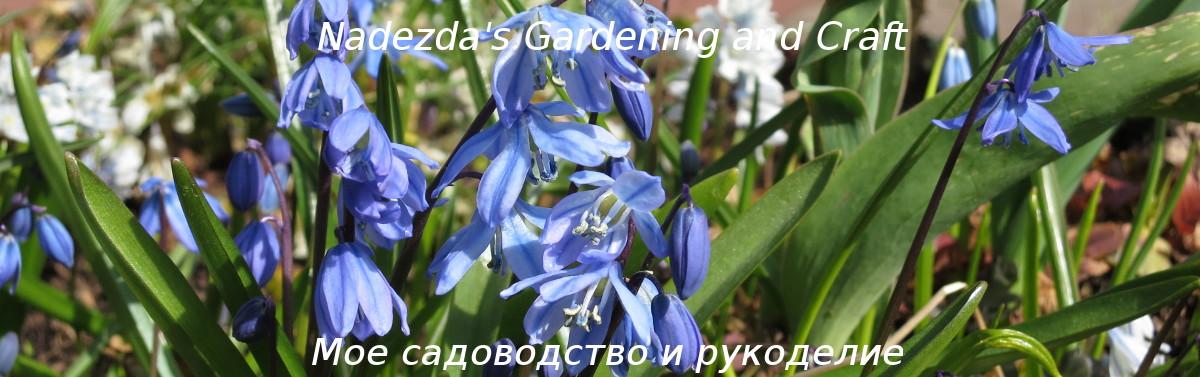 Nadezda's Gardening and Craft