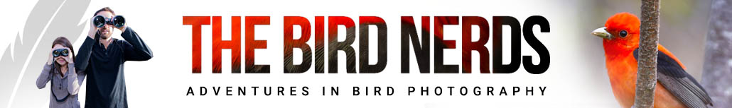 The Bird Nerds - Bird Photography Blog