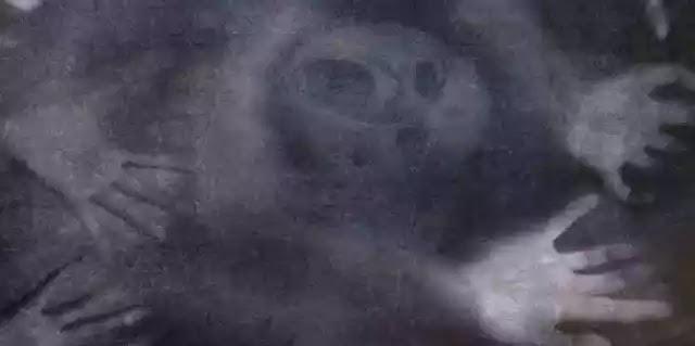 Στοίχειωμα: Τα πνεύματα και η άλλη πλευρά της Νύχτας