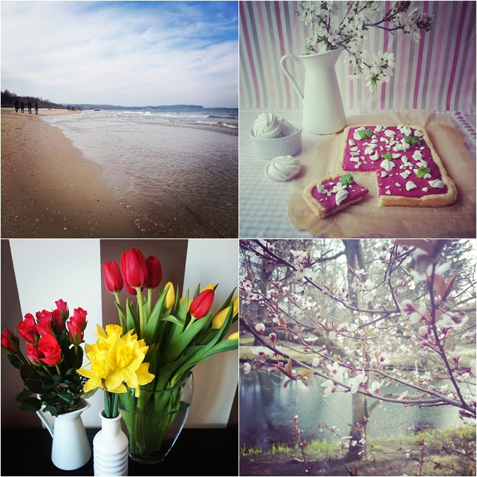 wielkanoc, gdańsk, bałtyk, morze, tulipany, wiosna, kwiaty, kwitną