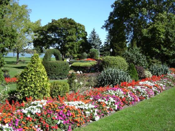 Beautiful flowers for Beautiful garden layouts