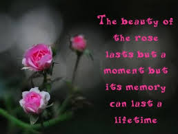 Quotes About Flowers Quotes On Flowers Blog Art Designs