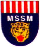 LOGO MSSM