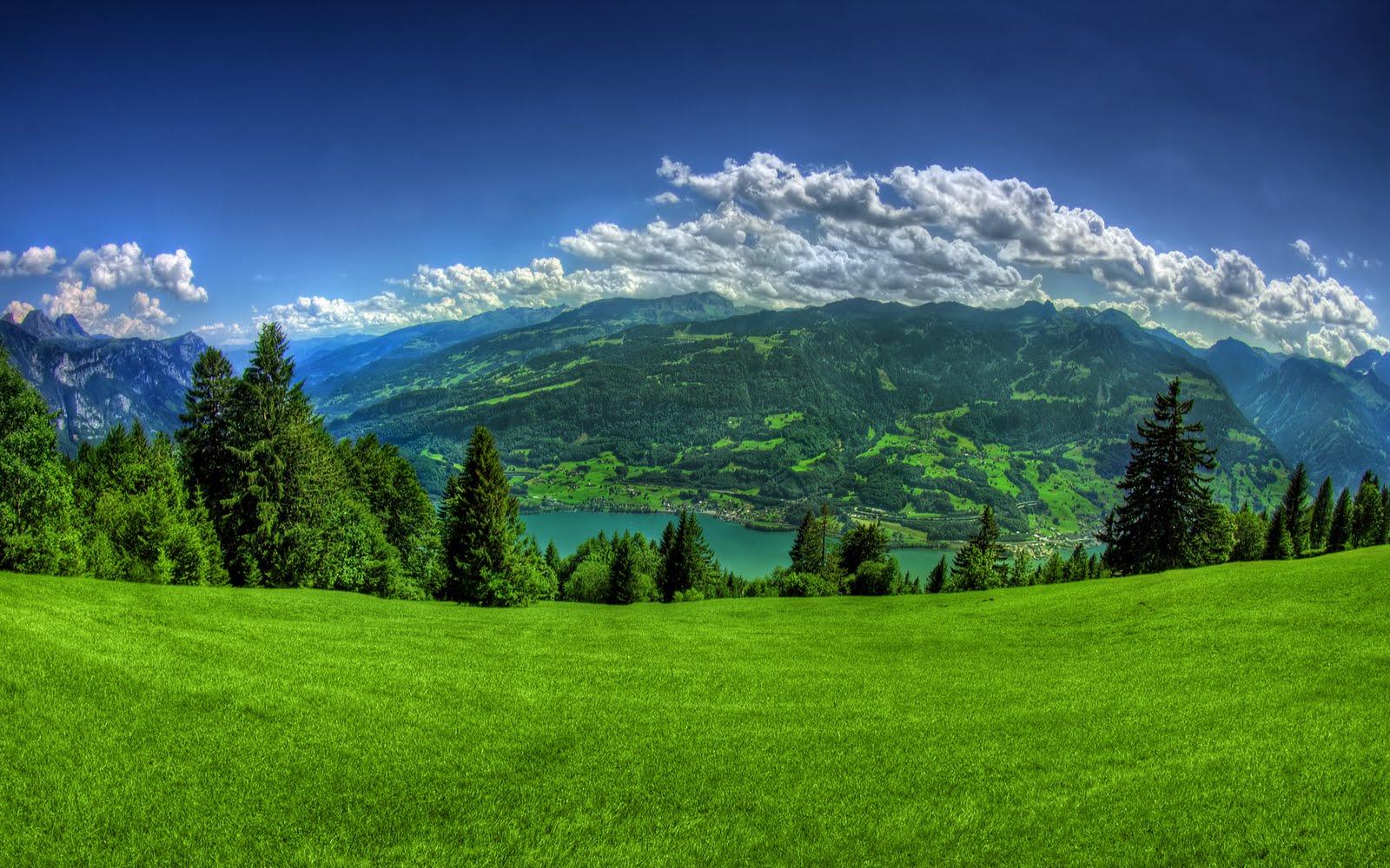 Fantastic Wallpaper Mountain Windows Vista - green+nature+images  Collection_4202.jpg