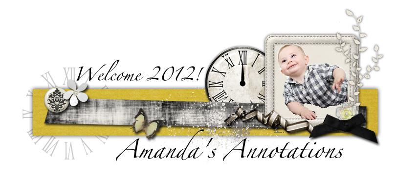Amanda's Annotations