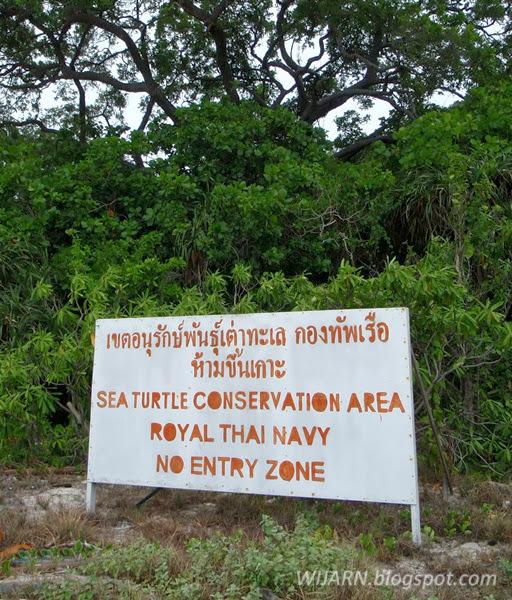 เกาะครามใหญ่ ชลบุรี