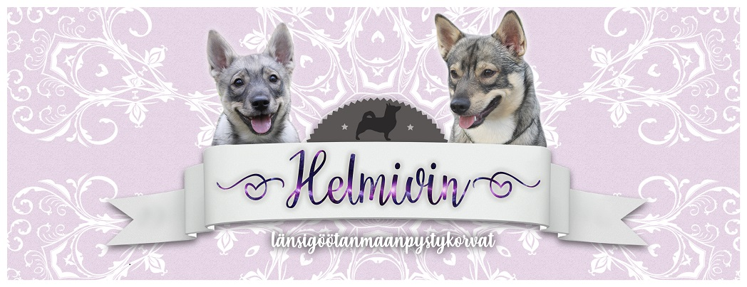 Kennel Helmivin