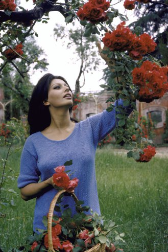 Sophia loren at home in italy 1964 vintage everyday Sophia house