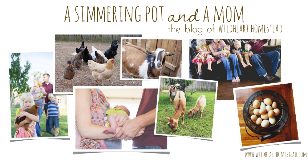 A Simmering Pot and a Mom