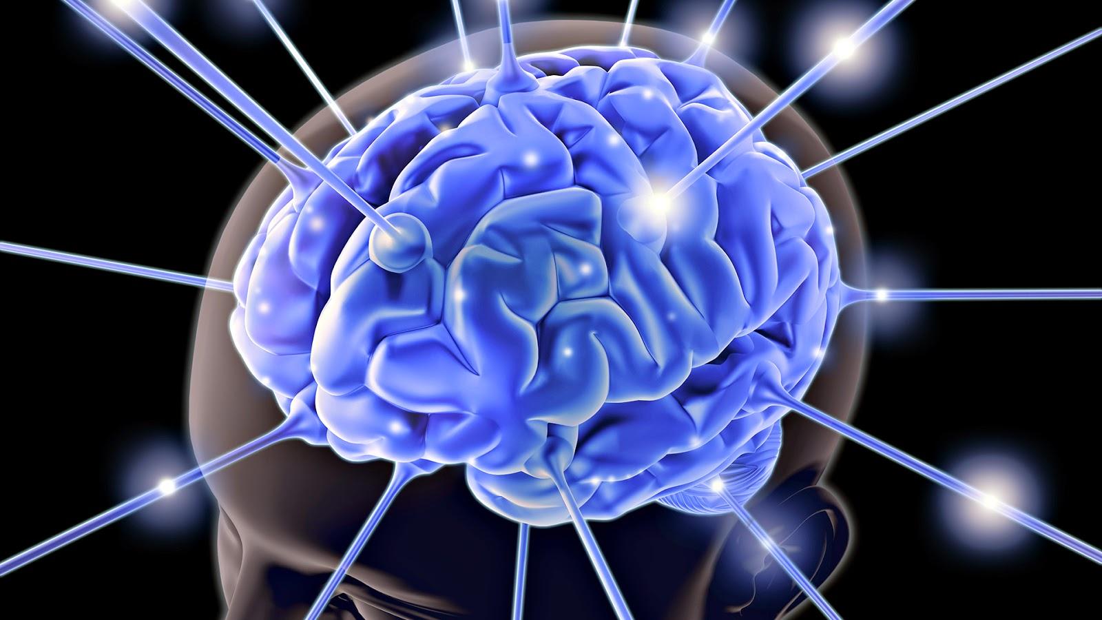 تعلم كيف تحفظ درسا كبيرا في 15 دقيقة مع ضمان بقائه في عقلك