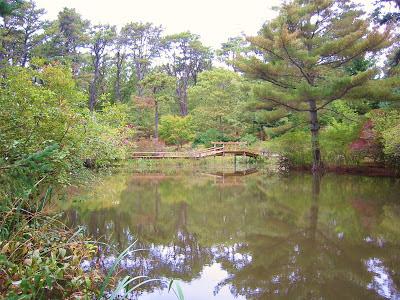 Mytoi Gardens Chappaquiddick