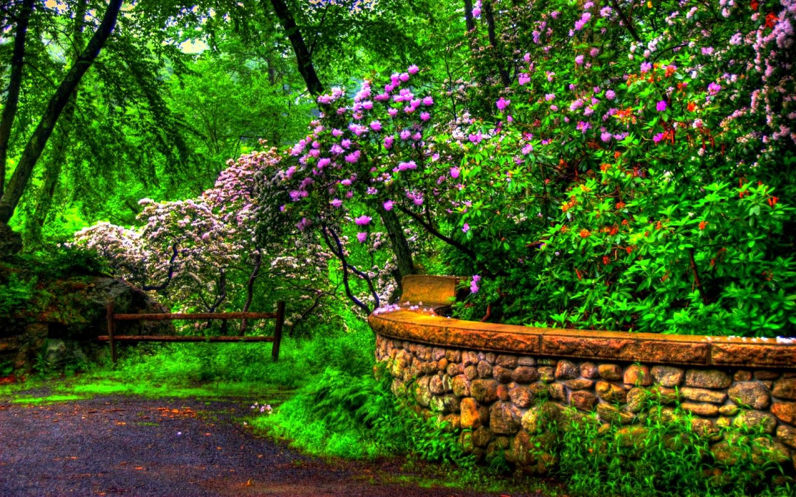 Banco de im genes 30 fotos bonitas de paisajes animales for Jardines naturales