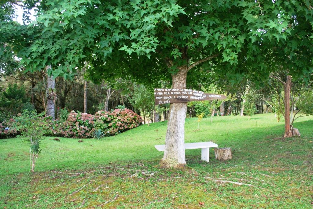 banco de jardim frases:Existe um caminho no meio do sítio que é chamado de Via Sacra, eu