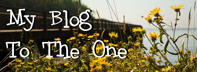 My Blog to The One