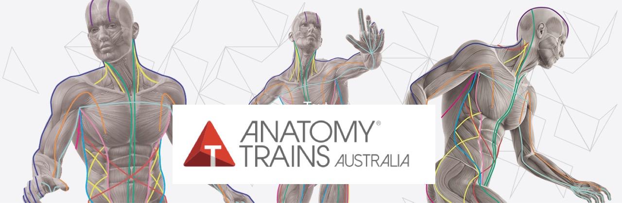 ANATOMY TRAINS | Australia-New Zealand 2016 Workshop Programme ...