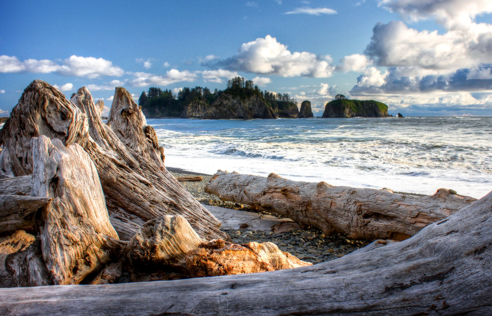 Best Beaches In Washington State For Kids