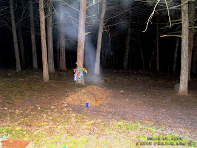 Listen: Dogman Encounters - Stay out of Hummel Park After Dark!