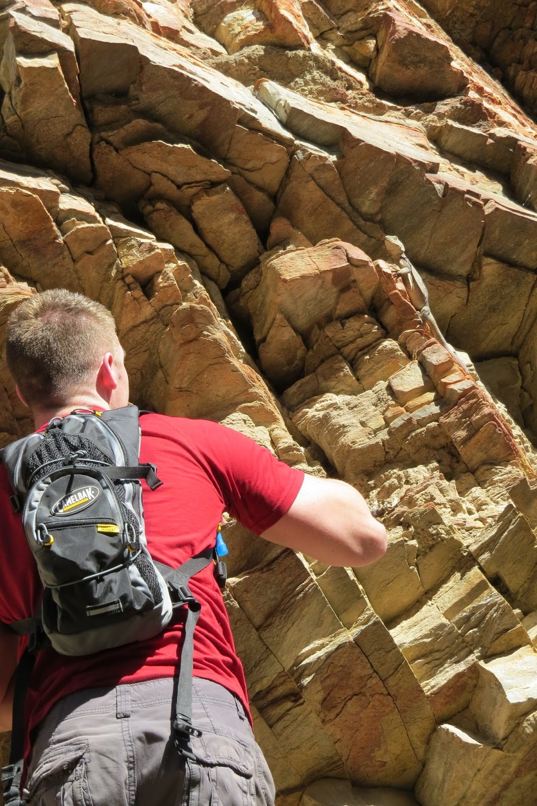Indian Canyon hike and a chuckwalla