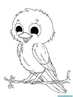 mewarnai gambar anak burung