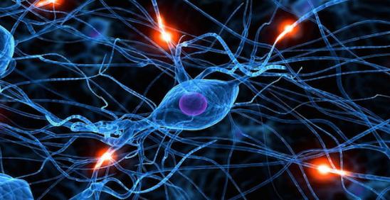 「神經網路」的圖片搜尋結果