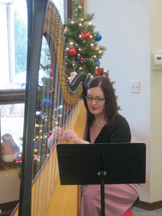 The Classic Harpist Kalamazoo Harpist Christmas Music At The Comstock Library