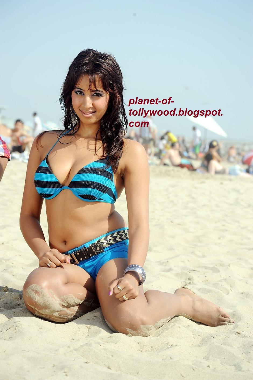 tollywood gallery kannada and telugu actress sanjana hot