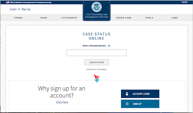 Case Status Online | Ways to stay on top of the visa application process