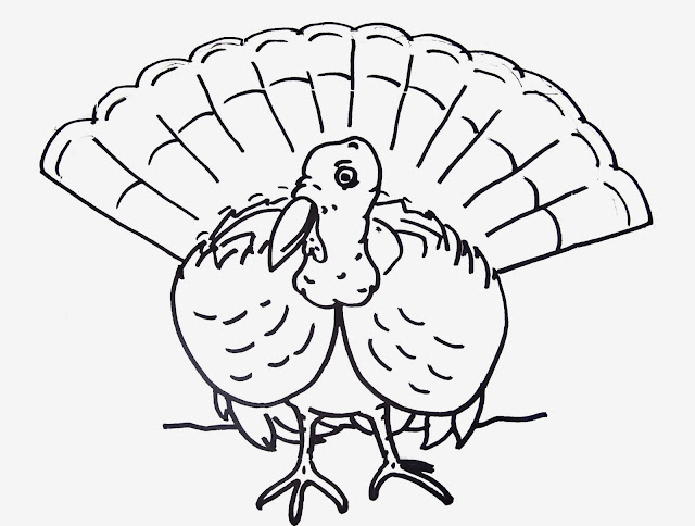 Realistic Turkey Coloring page Free Download Printable