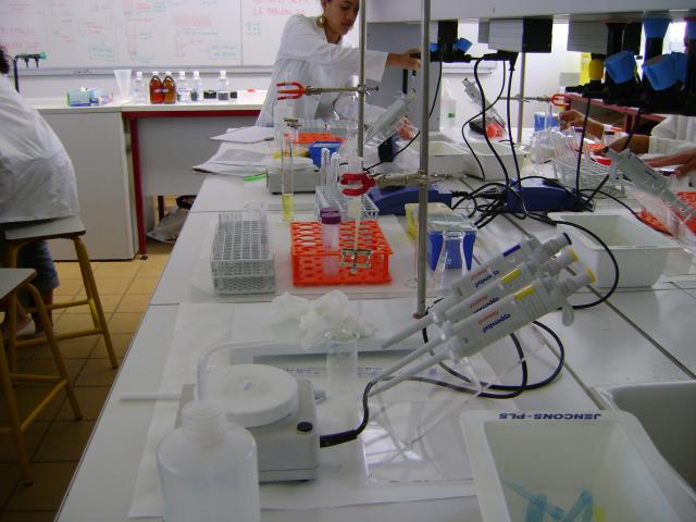 TD  Enzymologie et Biochimie Métabolique svi s4 2014/2015
