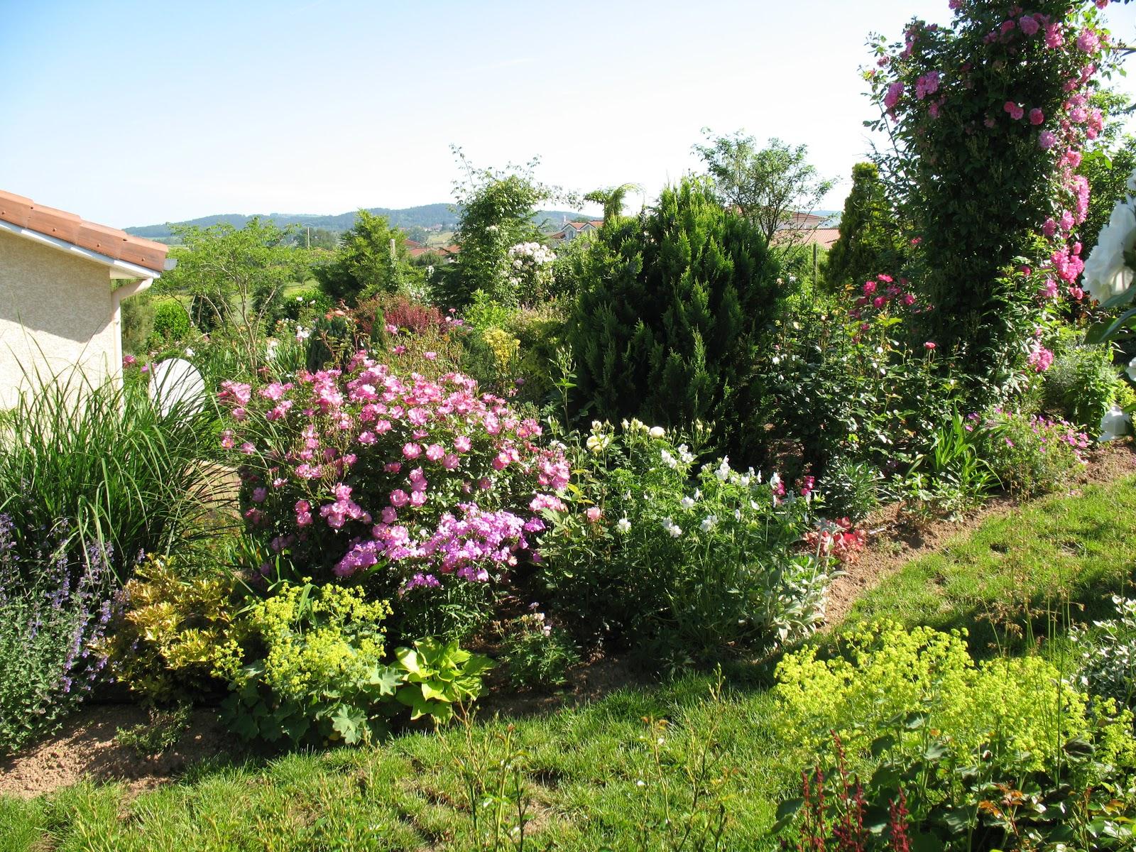 roses du jardin ch neland lavender dream dans son d cor. Black Bedroom Furniture Sets. Home Design Ideas