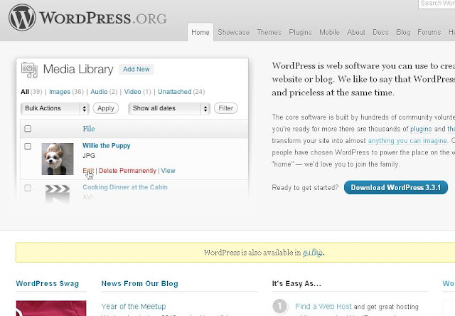 Wordpress Snapshot