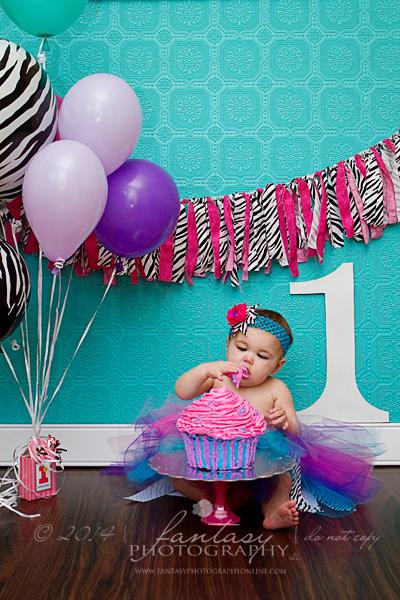 baby photographers in winston salem nc | cake smash winston salem