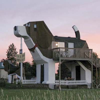 House That Looks Like a Dog