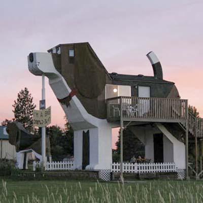 House That Looks Like a Dog