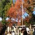 Święto flagi w szkole