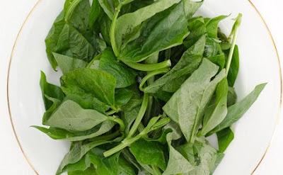 daun kacang panjang atau lembayung