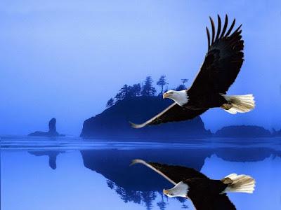 Vivir en plenitud como las Águilas