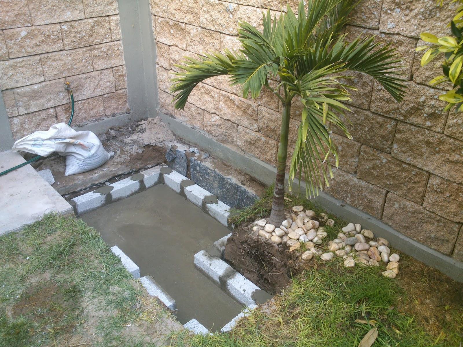 El estanque de mis tortugas el acuario - Estanques para tortugas de agua ...