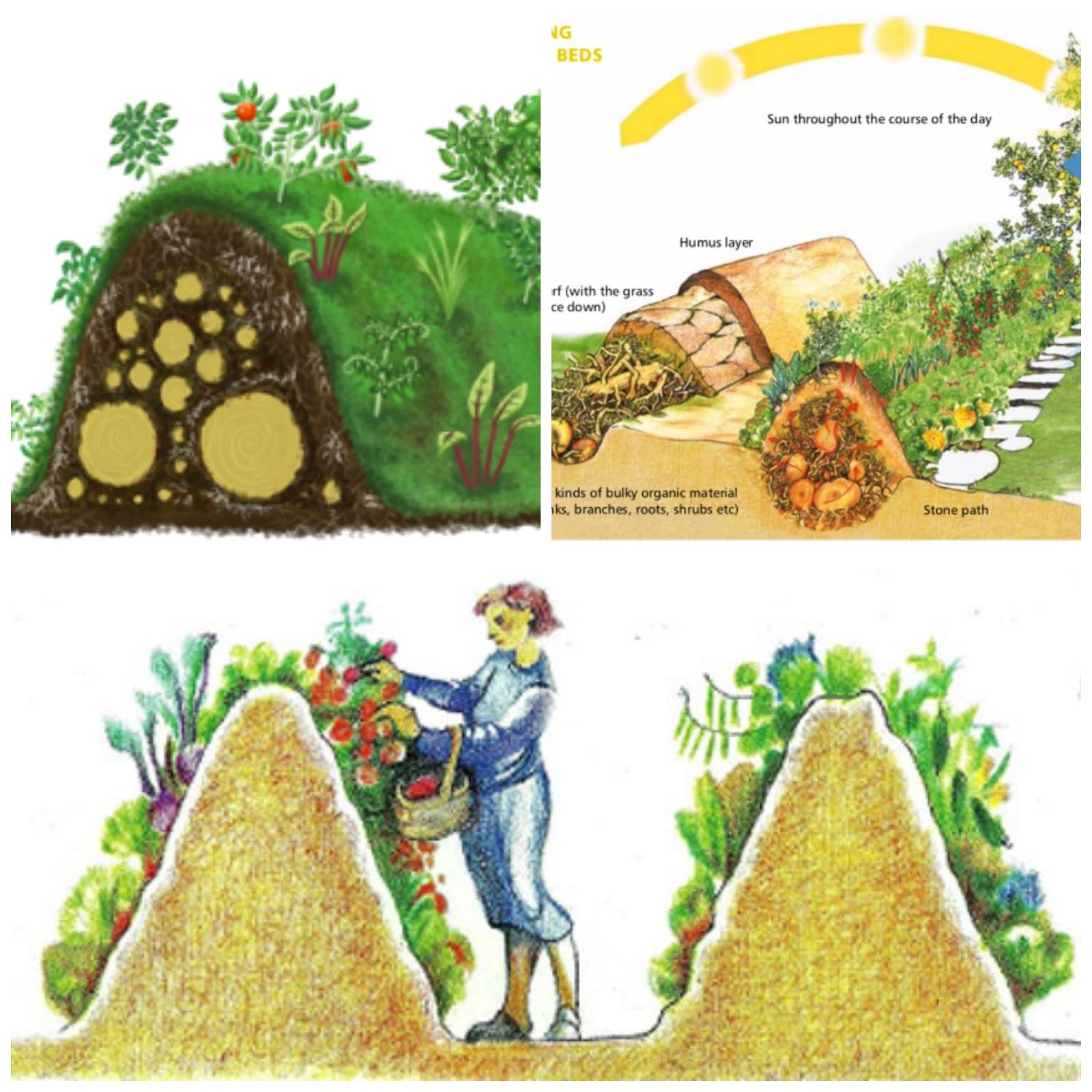 Hugelkultur natural permaculture gardening for Culture permaculture
