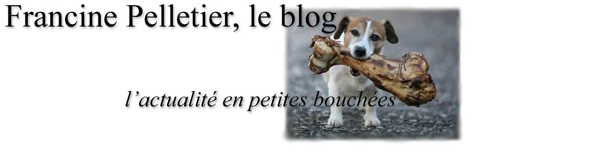 Francine Pelletier, le blog