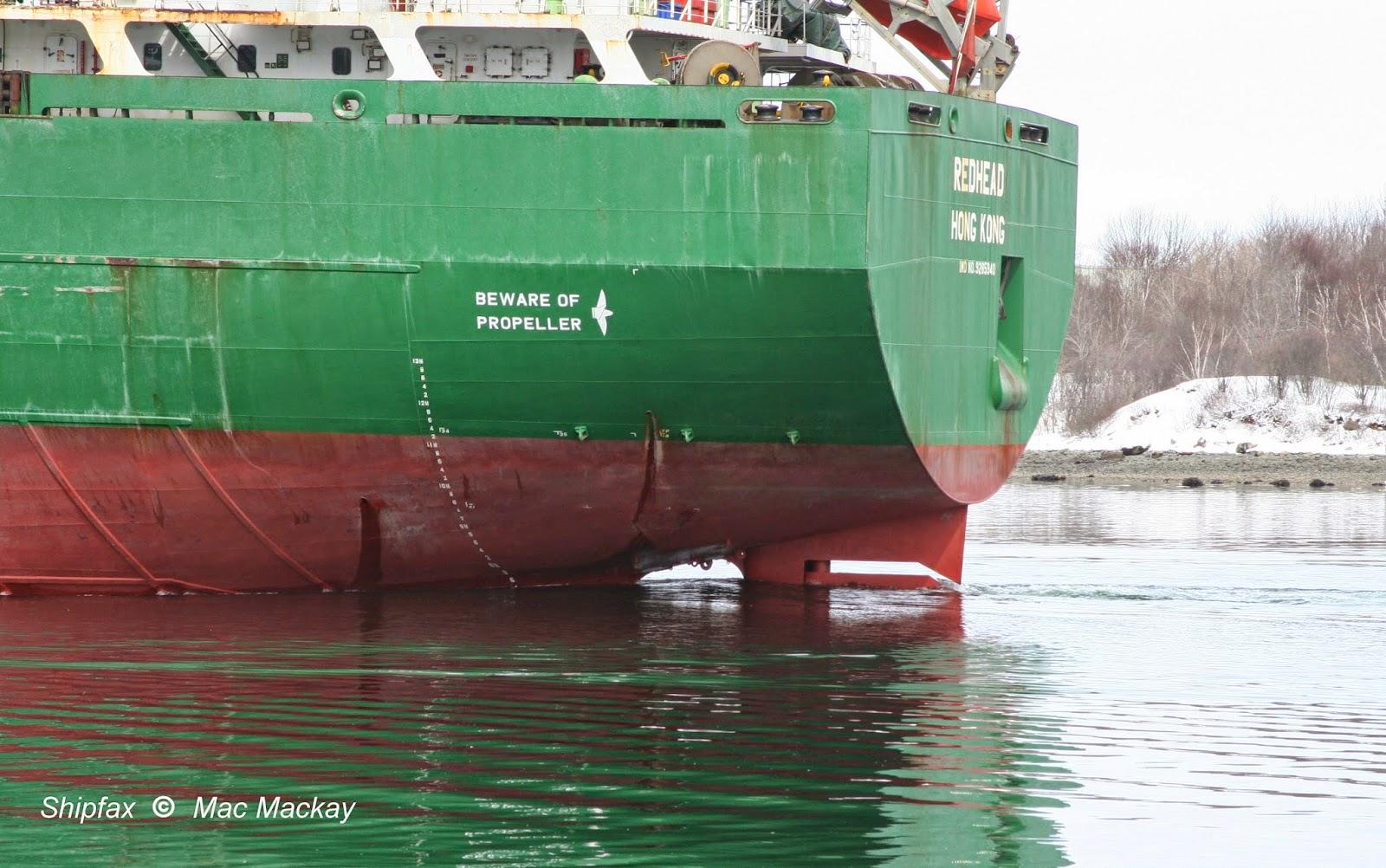 ship hong kong Redhead