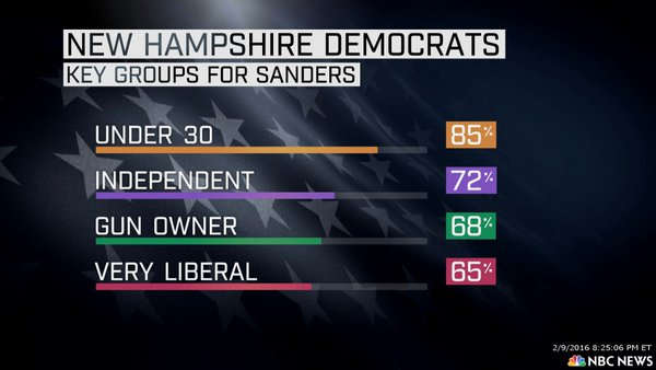 Who Voted for Bernie Sanders in NH