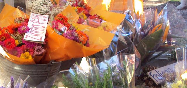 Harkerville Market Flowers