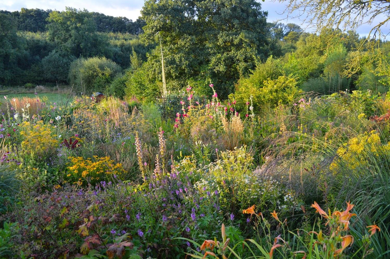 Garden in august in a garden - August Is A Messy Month