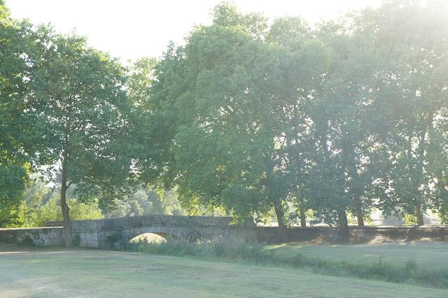 chateau chambord, france, lawn