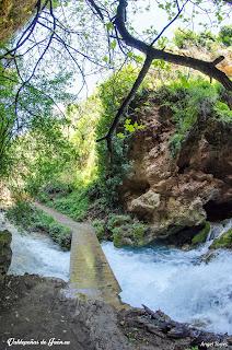Puente sobre el rio
