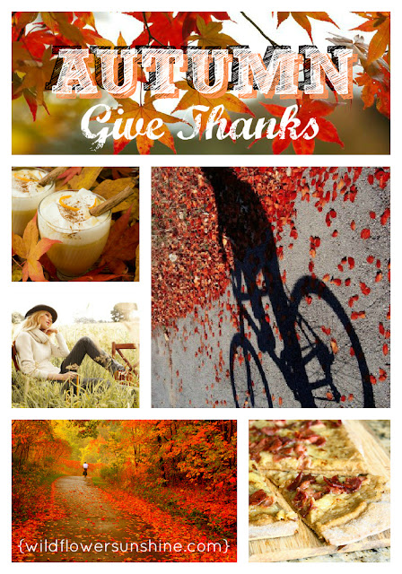Thankful Heart Thursday with @WildflowerShine