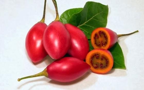 10+buah+paling+aneh+di+dunia,+Tamarillo.